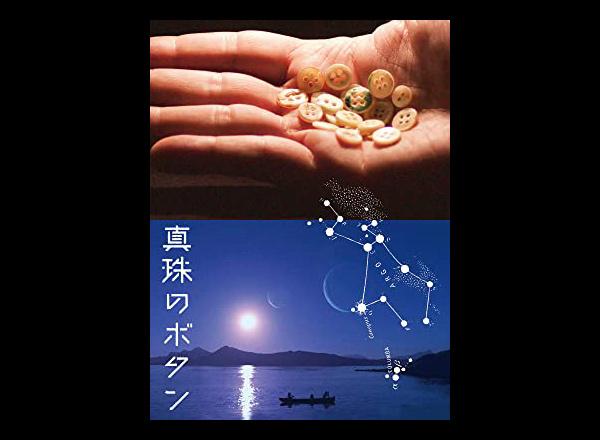 『真珠のボタン』が見られるVODと次に見るべき映画